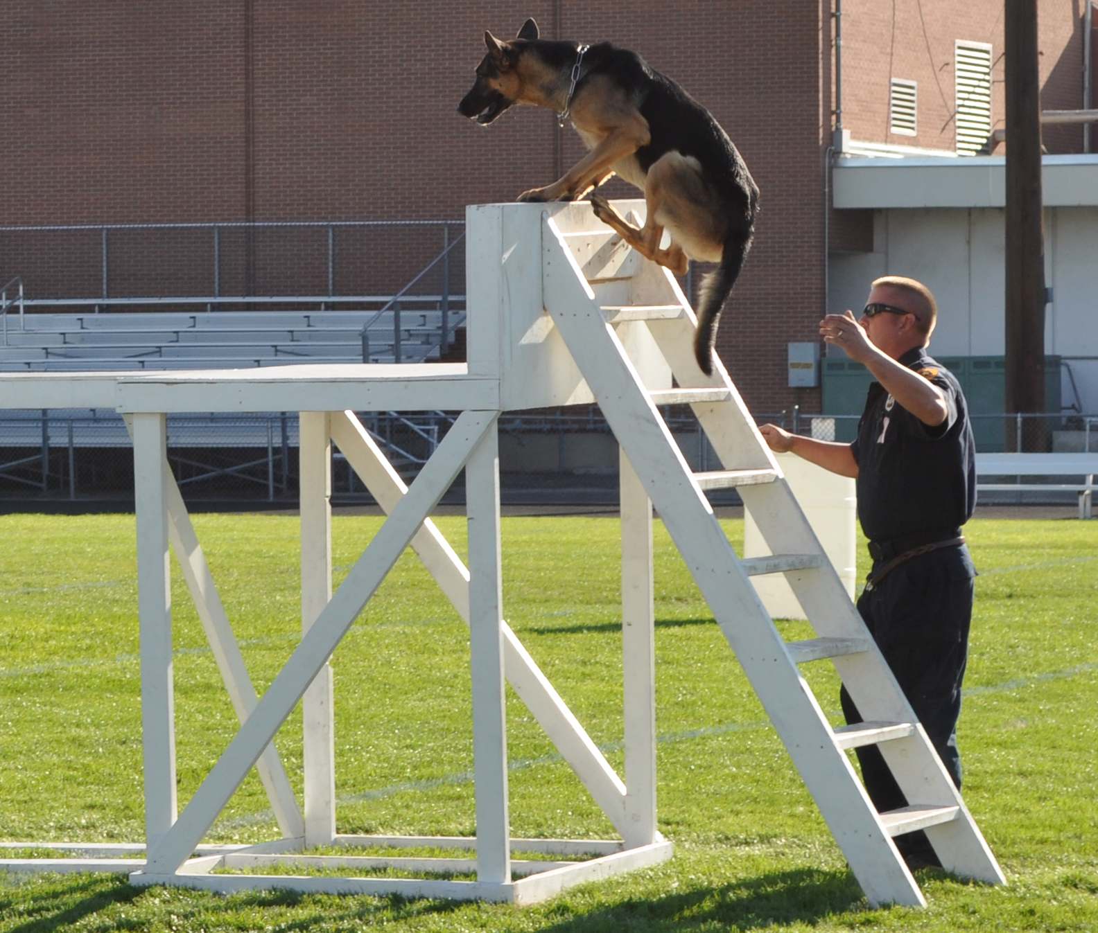 A trophy and bragging rights are up for grabs at the K9 trials at Provo High School.