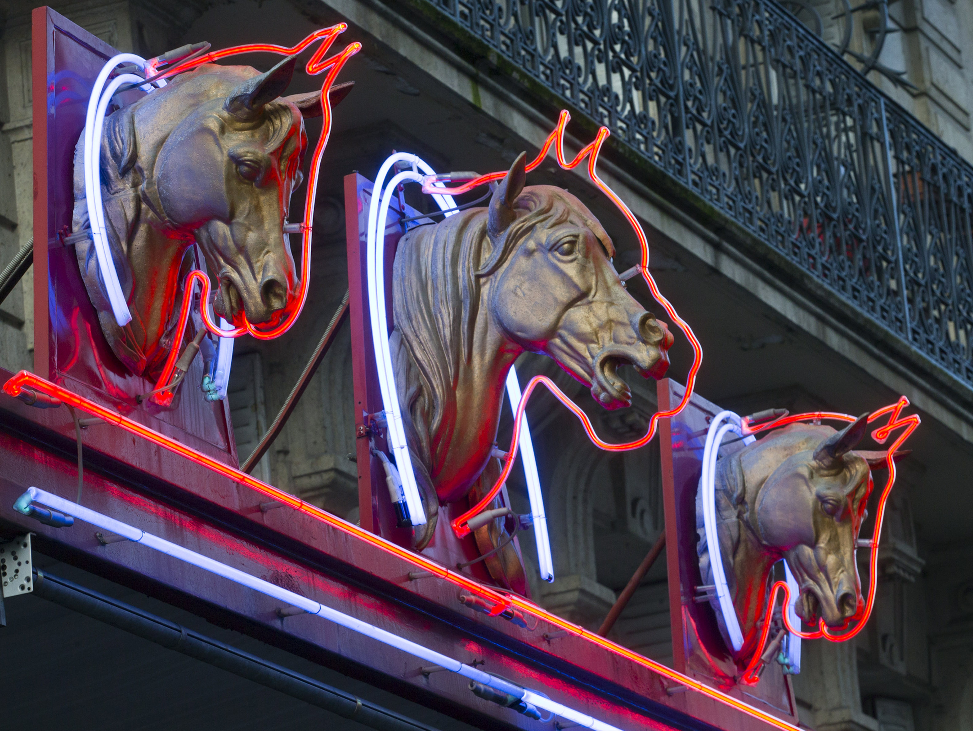 horse meat scandal in europe 2013 Read horse meat scandal latest on itv news all the tuesday 12th february 2013 news.
