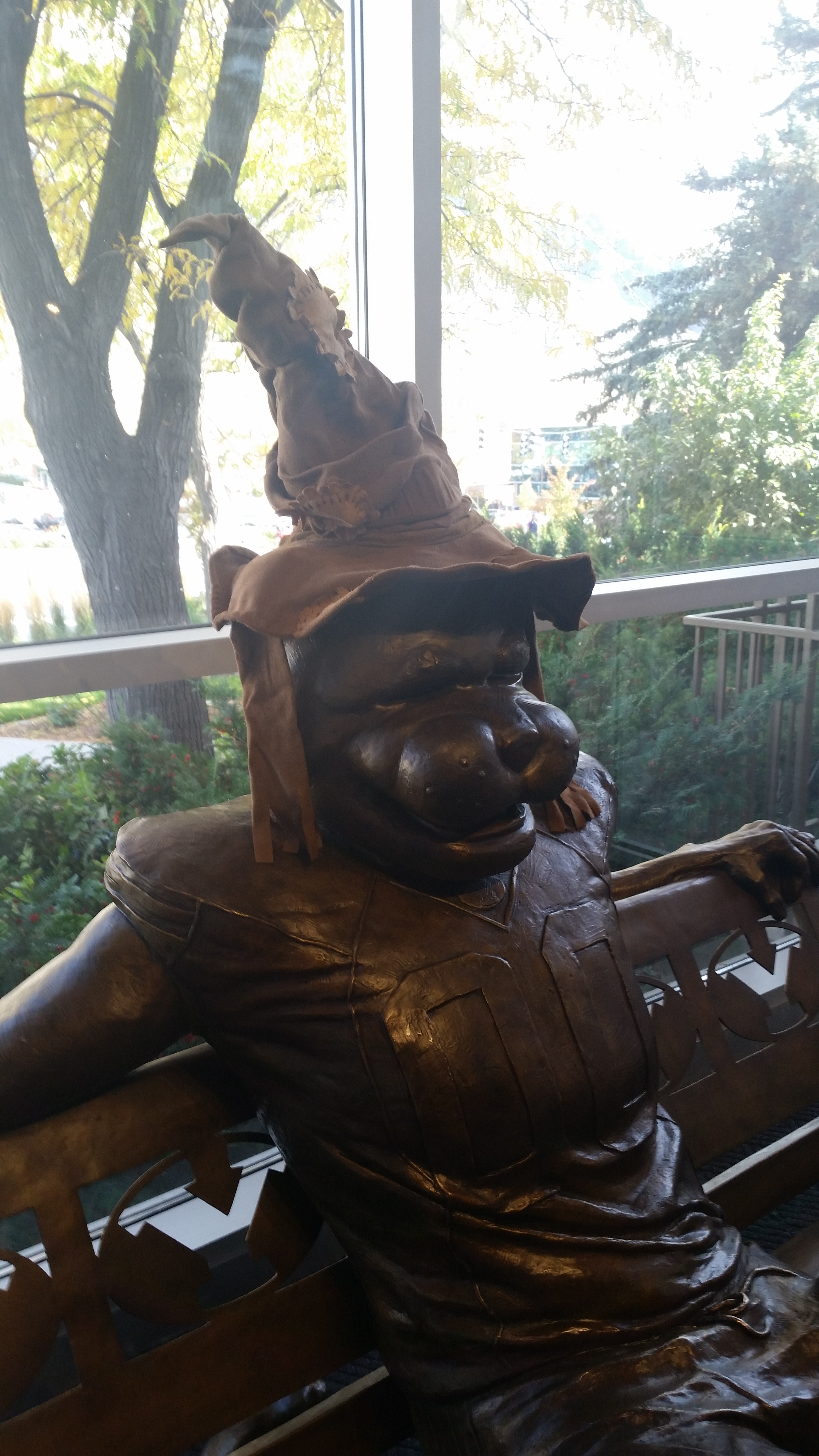 Cosmo the Cougar dons the Hogwarts Sorting Hat for Harry Potter Week at The Wall.