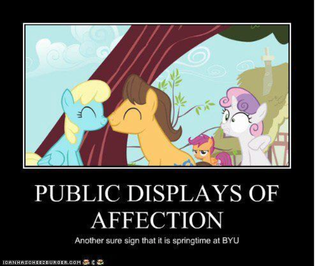 Screen Shot 2015 02 25 at 12.14.30 PM byu memes archives the daily universe