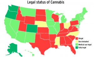 A graphic showing which states currently legalize marijuana, both medical and recreational.