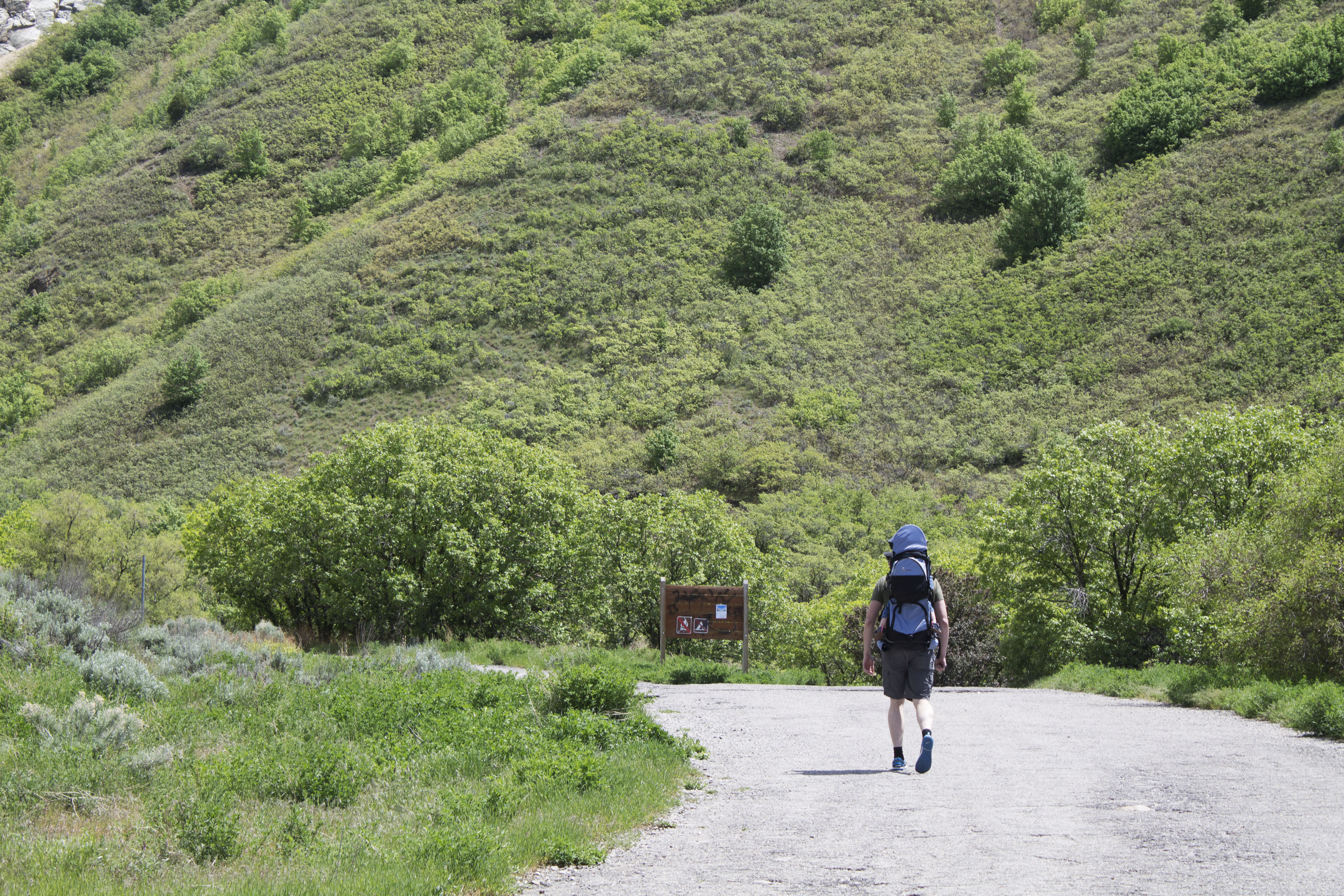 A hiker carrying his infant son begins going up the trail in Rock Canyon. Parks in Provo will be receiving upgrades over the next ten years, but at a cost to Provo Shoppers. (Katie Nielson)