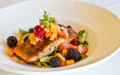La Jolla Groves salmon salad