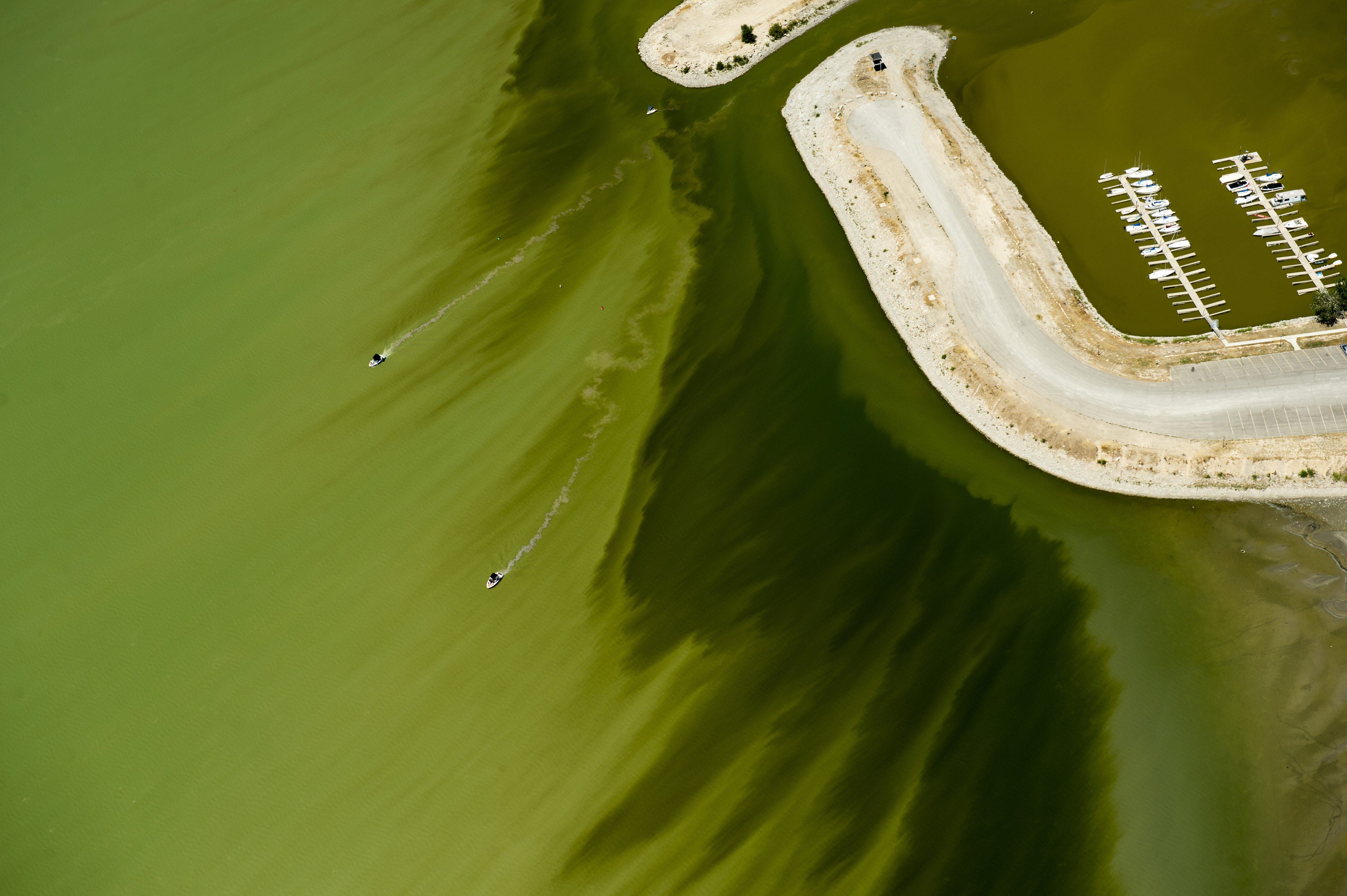 A couple of boats sail through discolored water caused by an algae bloom near the Lindon Marina in Utah Lake in Lindon, Utah. Utah County health officials said at least eight people have fallen ill after interactions in Utah Lake, which has a potentially toxic algae bloom. (Rick Egan/The Salt Lake Tribune via AP)