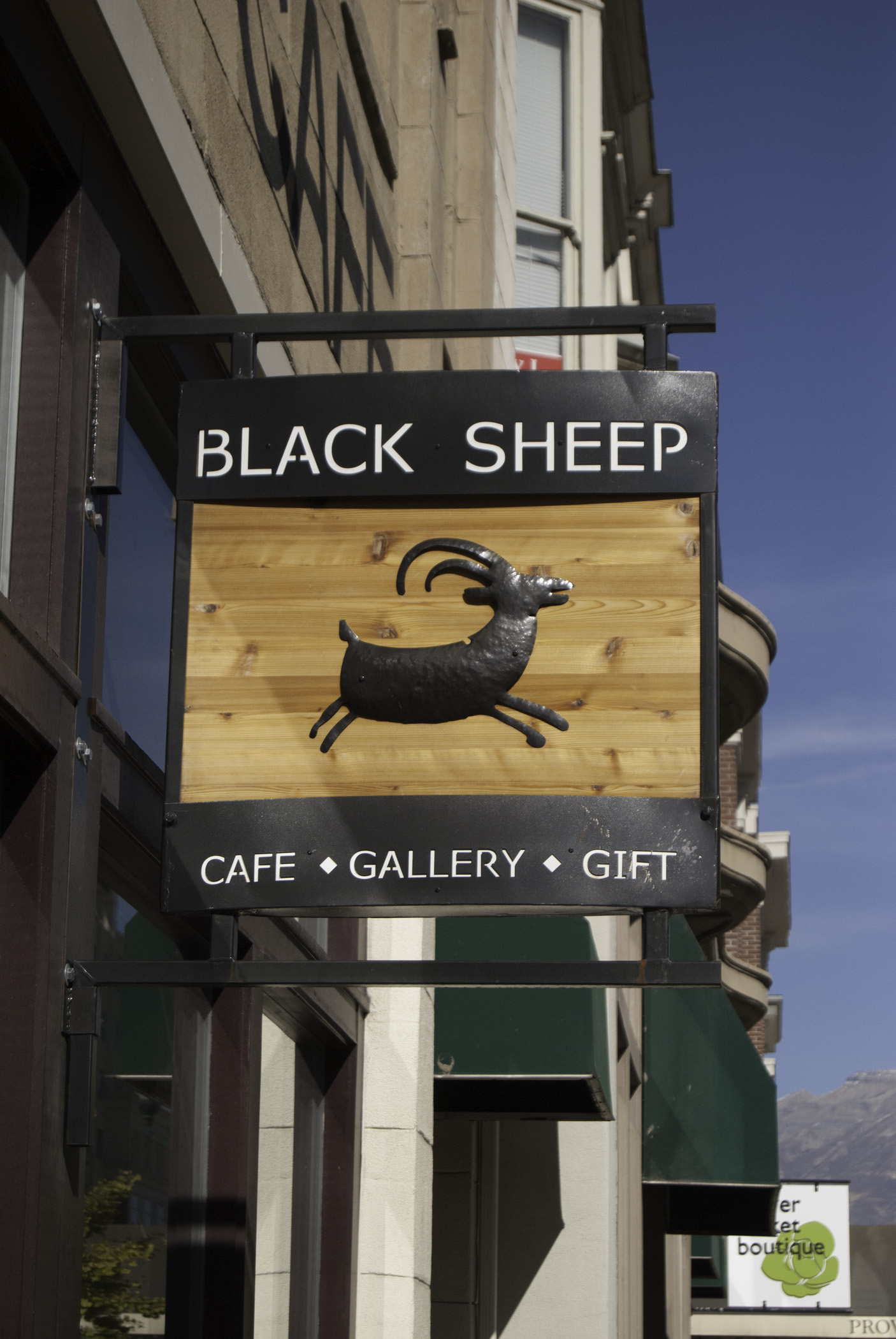 Image result for black sheep provo