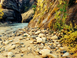 The Narrows is a popular hike at Zion National Park in southern Utah. (Photo Credit: Frederick Ward)