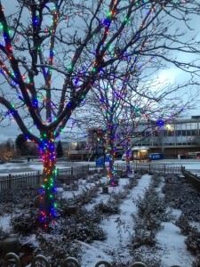 Christmas lights decorate Brigham Square early morning on the BYU campus. (Jenna Koford)