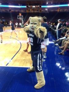 #4 Cosmo the Cougars - BYU (J Mason Nordfelt)