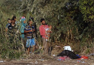 Migrants cross a border line between Serbia and Hungary, near the village of Horgos, Serbia, Friday, Aug. 28, 2015. Record numbers of migrants fleeing violence and poverty in countries such as Syria, Afghanistan and Eritrea are trying to reach Europe this year, despite the risks of perilous sea crossings and little humanitarian assistance. (AP Photo/Darko Vojinovic)