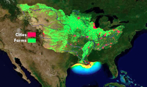 Map agricultural runoff in the Gulf of Mexico, where there are many dead zones. (Nature.org)
