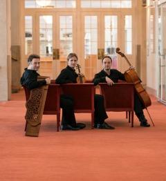 Vienna Piano Trio Photo