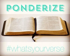 "Memes with the coined term ""ponderize"" are all over Facebook. The T-shirts and wristbands on ponderize.us sported the question, ""What's your verse?"" (Facebook)"