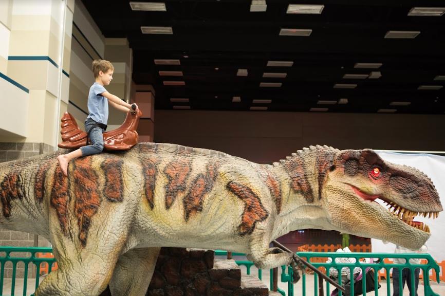 Eddie Berrocal s 8-year-old son Gavin rides his favorite attraction c959b42b1f