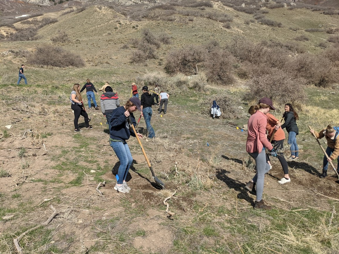 Students lead restoration project for Y Mountain trailhead